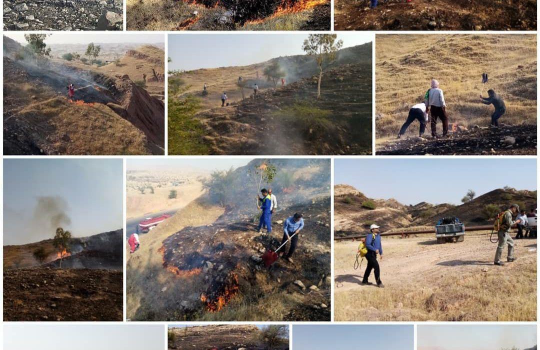 آتشسوزی در مراتع و جنگلکاری های مسجدسلیمان مهار شد