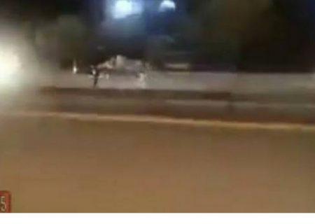 لحظه هولناکِ تصادف شاخ به شاخِ گاو فراری با خودرو پراید!+فیلم