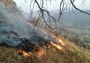 دلا بسوز که از سوختنت دلی نسوخت حکایت بهاری که در آتش سوخت